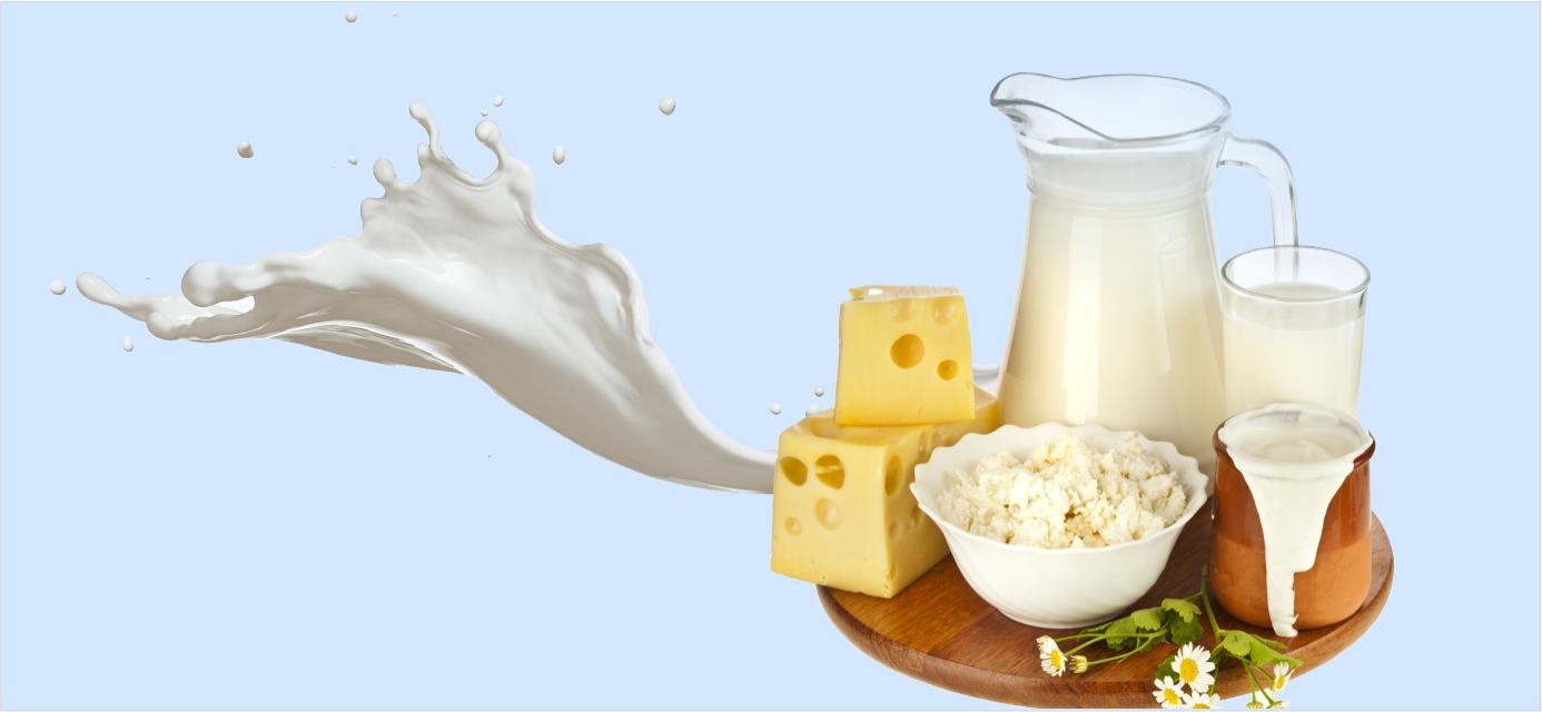Молочка: польза или вред?