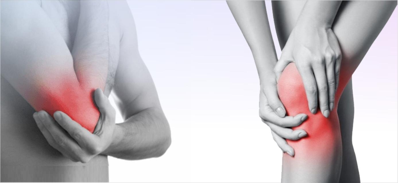 Суставы без боли: при чем здесь обитатели кишечника?